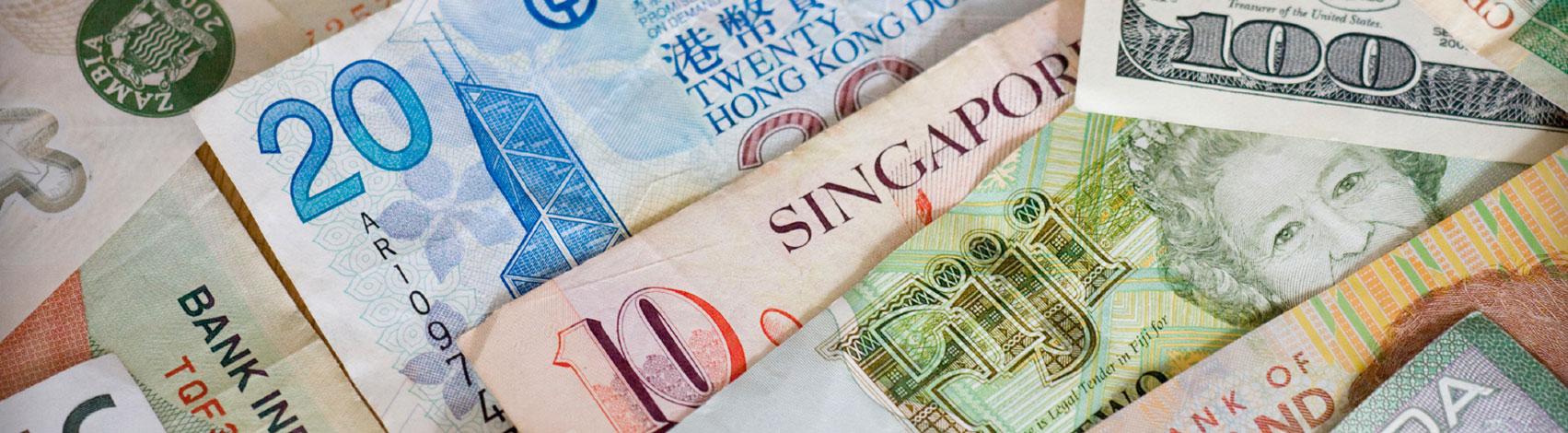 Insurance & Finance Translation Service