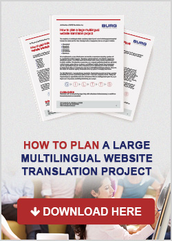 how-to-plan-a-large-multilingual-website-translation-project